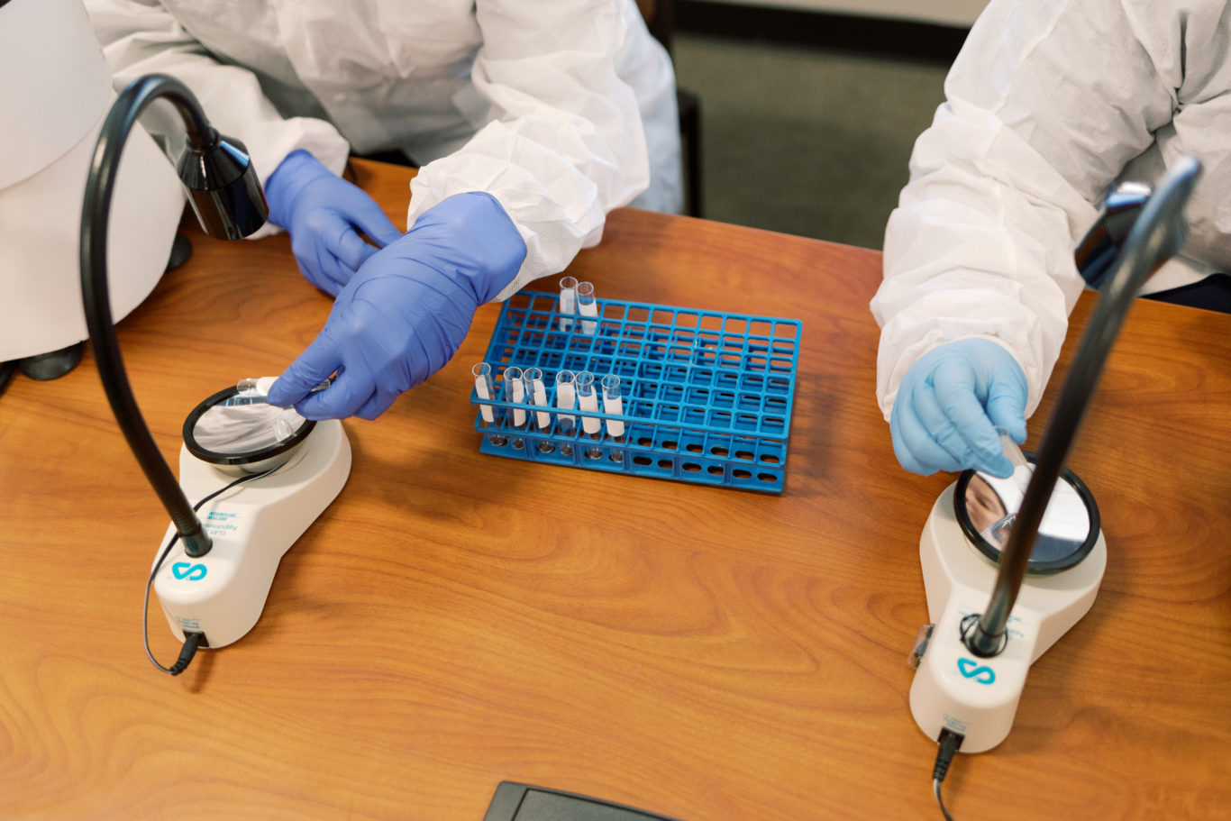 Medical students work in a laboratory