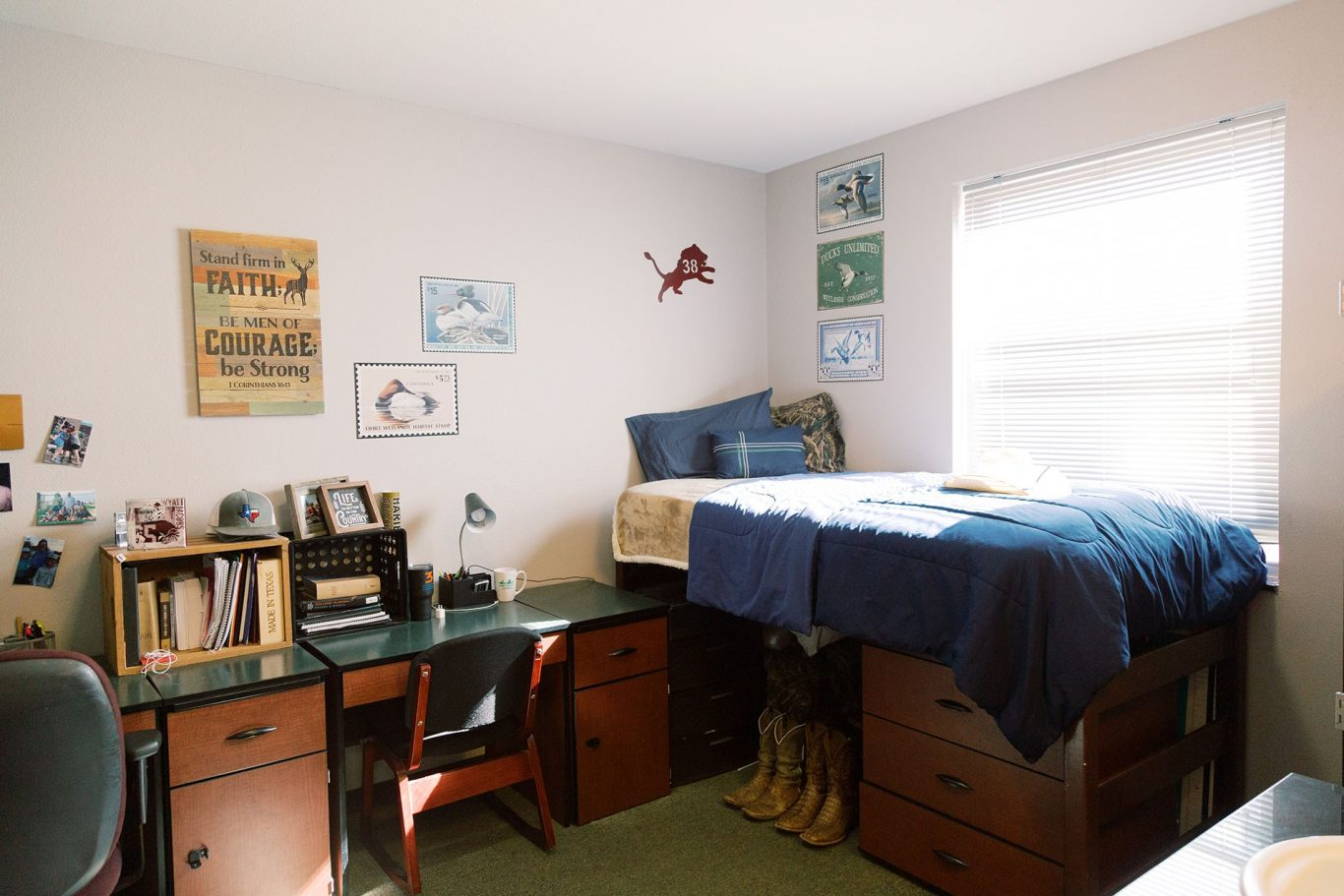 Mens premium dorm room